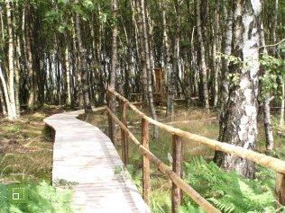 Huertgenwald